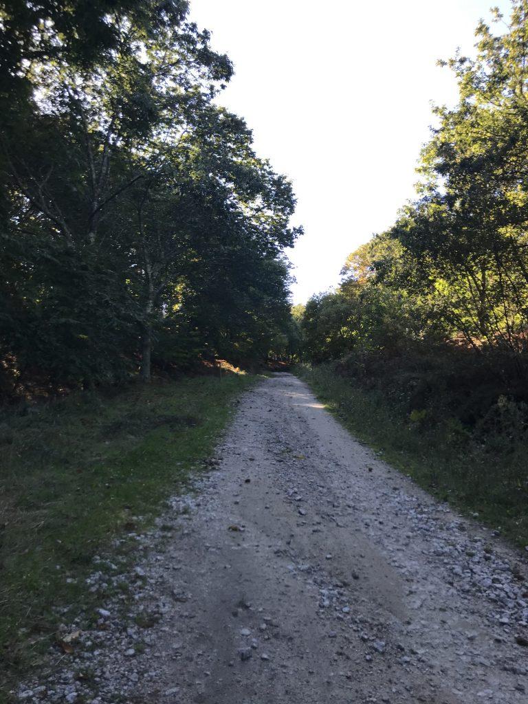 ruta-piricoto-do-vilar-desde-chandebrito-2
