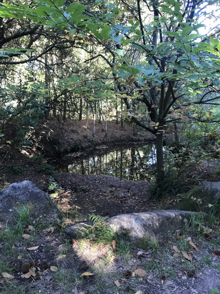 ruta-piricoto-do-vilar-desde-chandebrito-3
