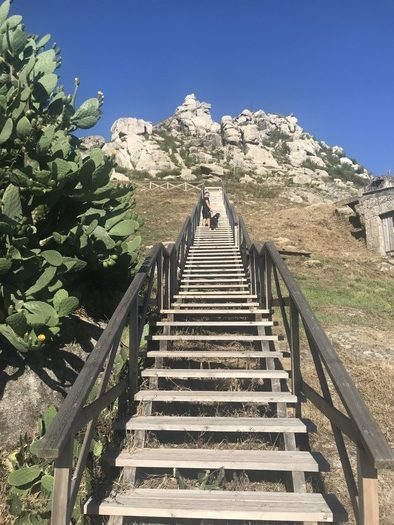 Escaleras de madera que suben al Castro de Chandebrito